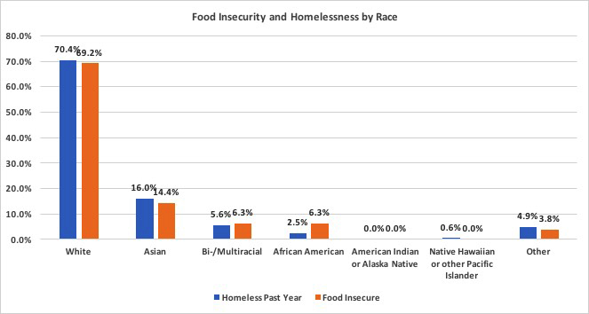 Food insecurity and homelessness by race graph